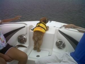 brody-boat